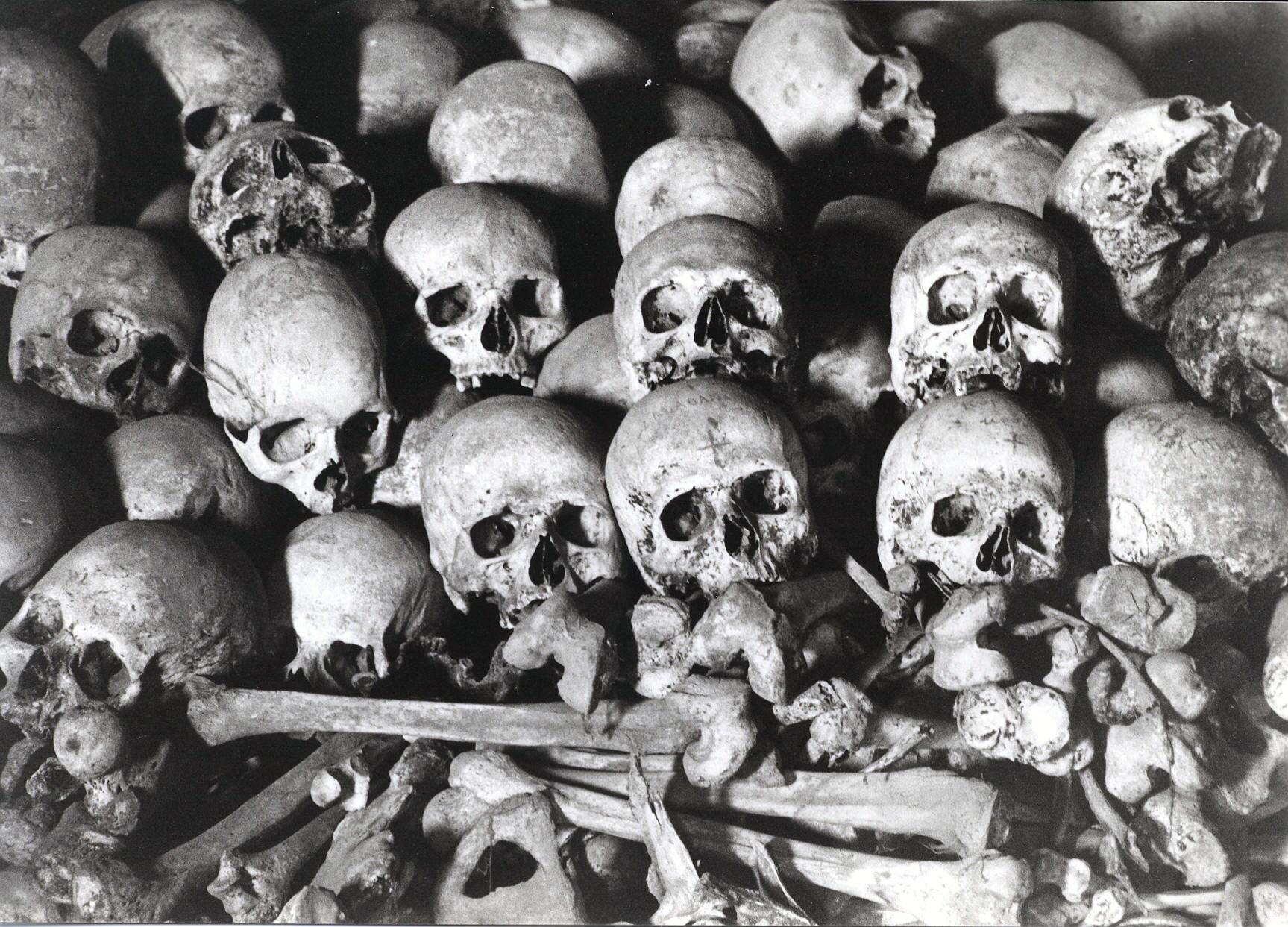 skulls and bones Trending: Skulls